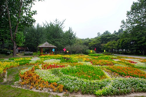 duhochanquochalo-yangjae-citizen's-forest