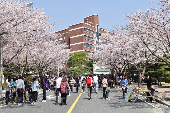 Bảng xếp hạng các trường đại học Hàn Quốc